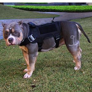 Tactical Dog Harness Vest Military Molle Vest Adjustable Working Training Dog Vest with Handle