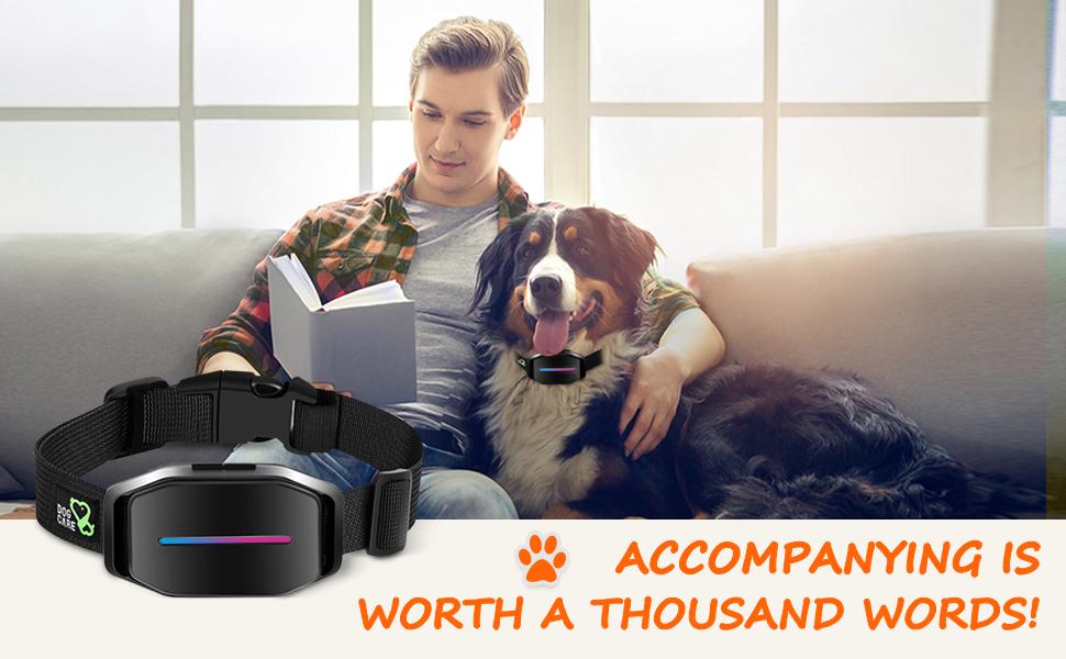 shock collar for barking bark collars for medium dogs bark collar large dog automatic bark collar