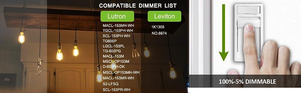 dimmable a19 led edison bulb