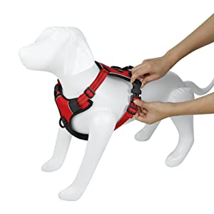 Confote Dog Harness