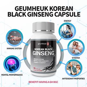 black ginseng panax korean red hongsam