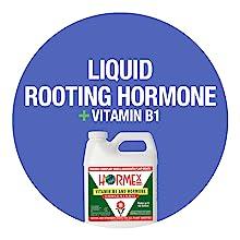 Vitamin B1 for Plants