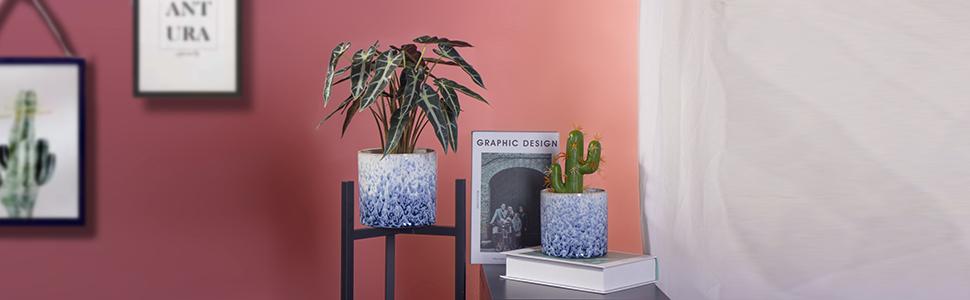 Ceramic Planters Indoor