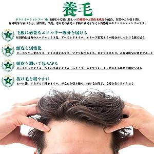 ボタニカルシャンプー meは有効成分を届ける力、活性化、保護、毛穴毛の育毛・予防に満足を与える新感覚のボタニカルシャンプーです。