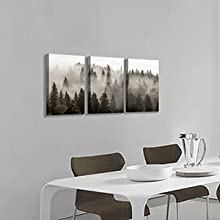 Amazing Foggy Forest