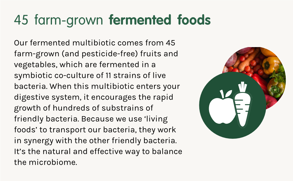 Together Multibiotic 45 farm grown fermented foods