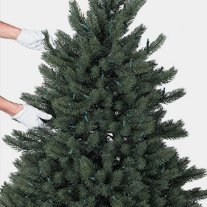 Remove all ornaments. Check that the tree is unplugged and the wires are not twisted or tangled.
