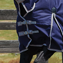 Image of the two buckle straps on the chest of the blanket on a horse