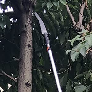 pole saw for tree trimmer