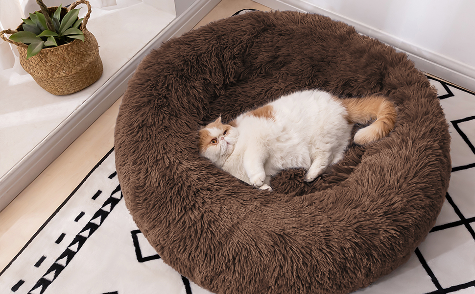 cat bed for 2 cats calming beds for cats calming pet snuggle dog bed for cats cat bed prime day