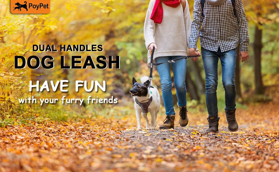 dual handles leash