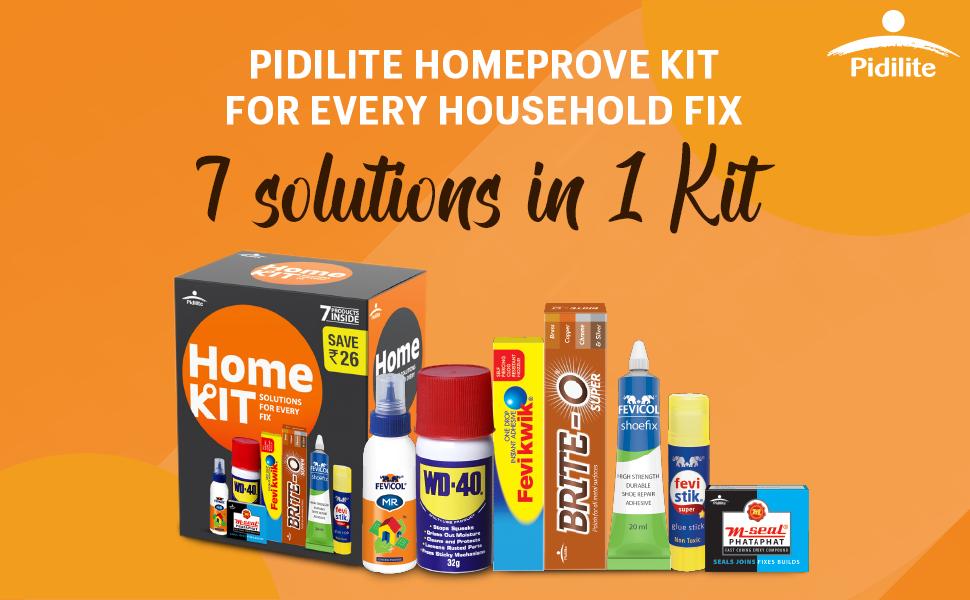 Pidilite home repair kit