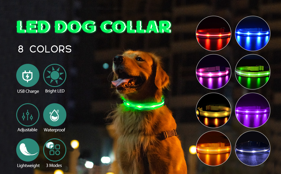 dog light up collar rechargeable led dog collar light up glow in the dark dog collars