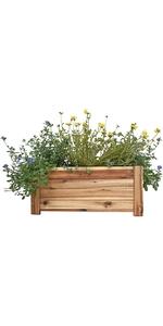 Rectangle Wood Planter Box