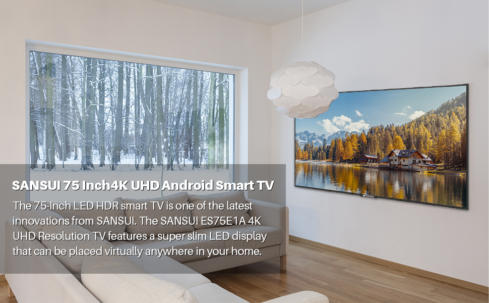 75 inch smart 4K TV