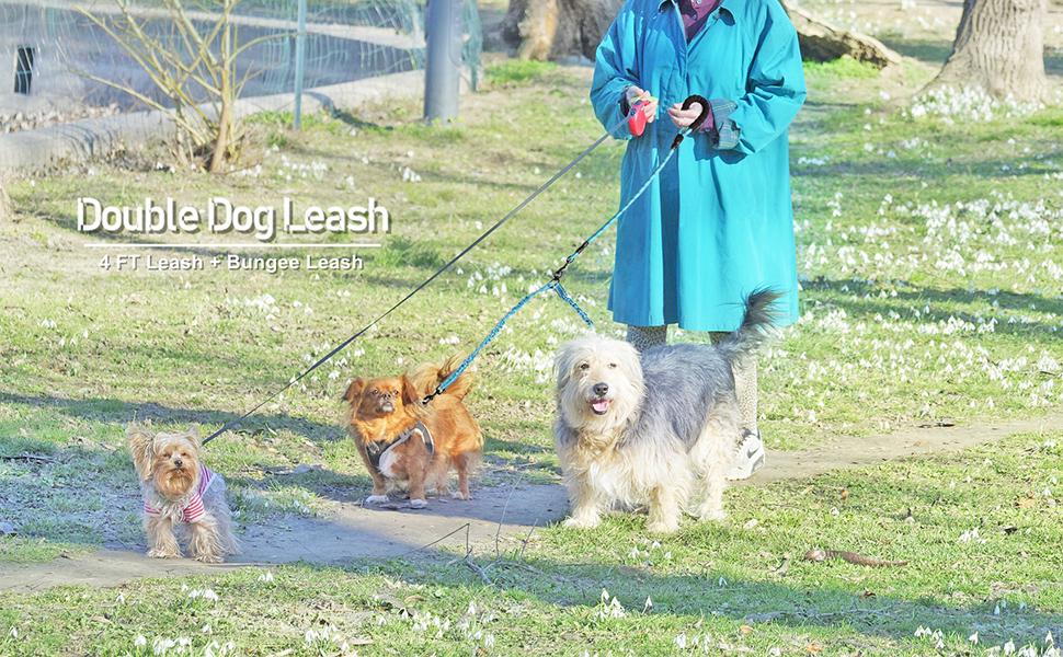 double dog leash bungee