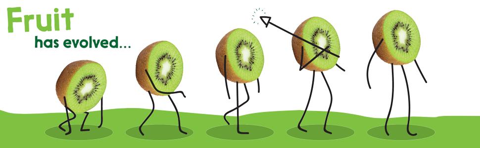 Fruit has evolved