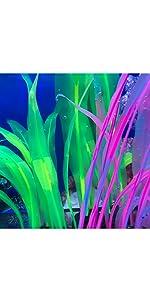 glow aquarium decorations