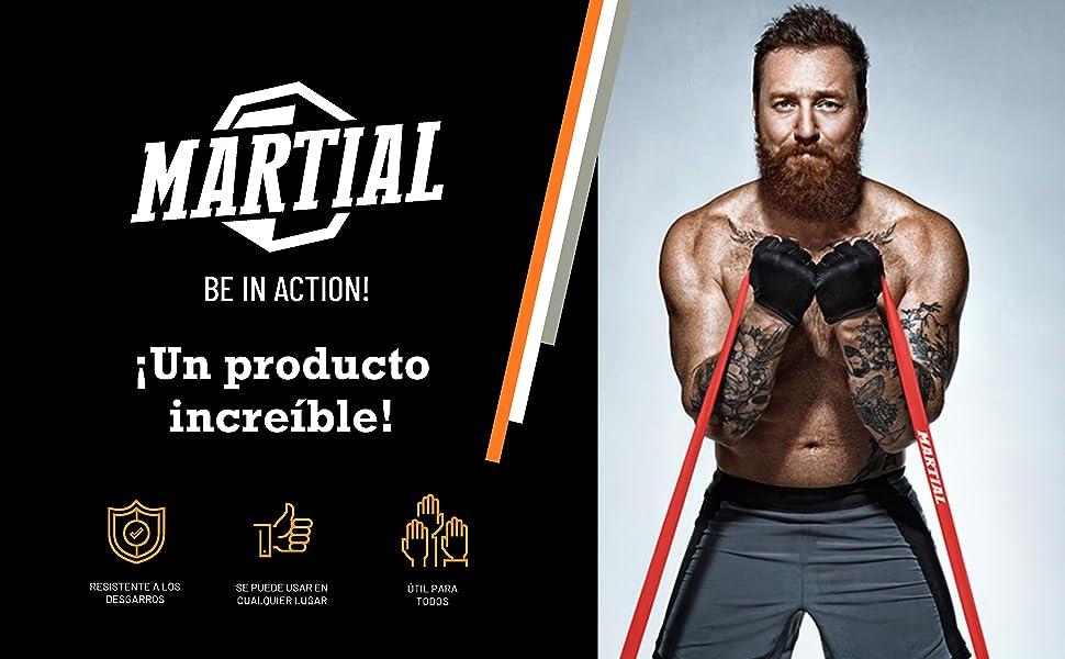 Martial Bandas Elásticas de Musculación para Entrenamientos Avanzados – Bandas de Resistencia Duraderas y Resistentes al Desgarro - 5 Niveles de ...