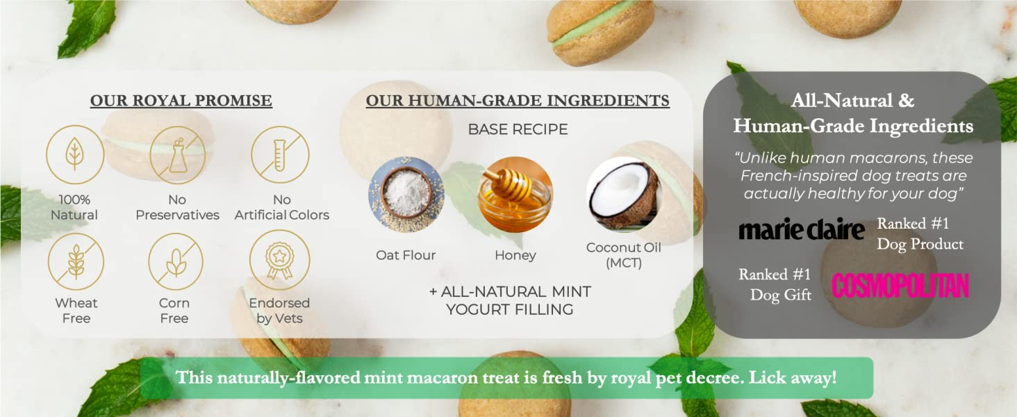 Dog Macarons macaroons mint treats biscuit healthy all-natural USA Handmade Honey Coconut vets