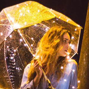 Vont Starry String Lights EBC