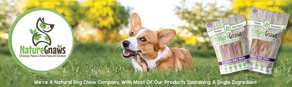 nature gnaws natural dog chew company