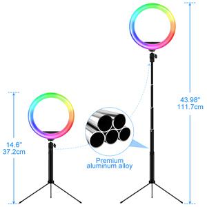 25,4 cm Ringlicht mit Selfie-Stick Stativ