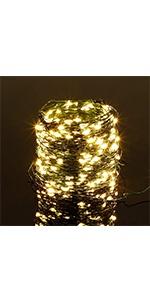 Green Wire String Lights