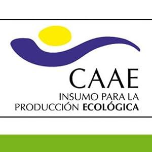 Vera Green Dermo Bio Crema de Aloe Vera Hidratante 100% Ecológica - 50 ml: Amazon.es: Belleza