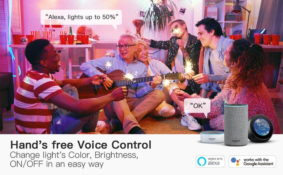 wifi light bulbs voice control alexa google home