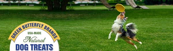turkey jerky dog turkey jerky dogs turkey jerky dog treats made in usa dog treats jerky