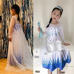 Frozen 2 Princess Elsa Dress