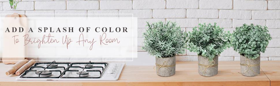 plant decor coffee table decor farmhouse kitchen coffee decor modern decor bookshelf decor