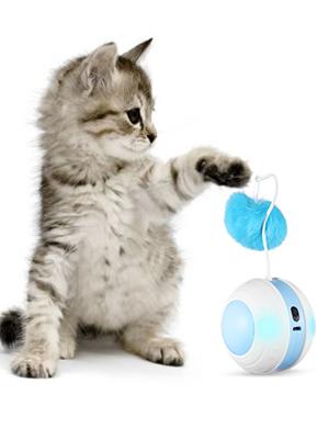 Interactive Cat Toys Ball