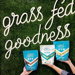 grass fed grassfed milk protein isolate mpi casein whey protein blend powder drink shake iconic mix