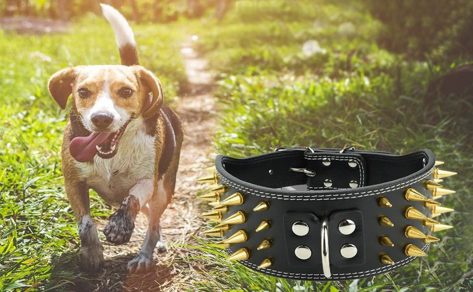 regolabile in pelle 4 file Collari per cani con collare a collare pet Pitbull Bulldog