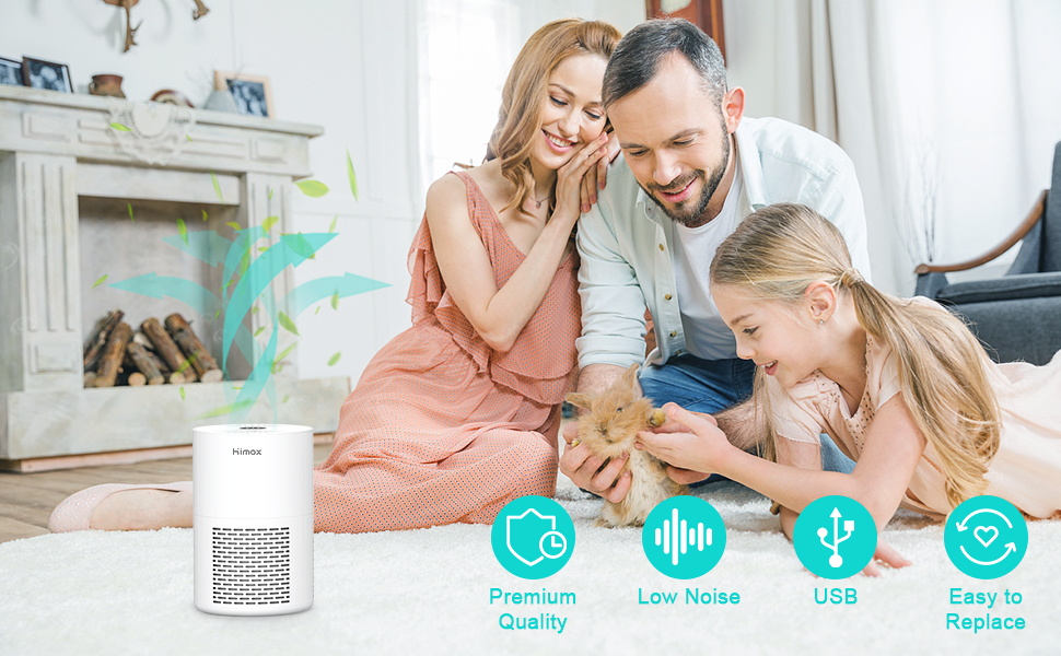 Air Purifier for Allergies and Pets