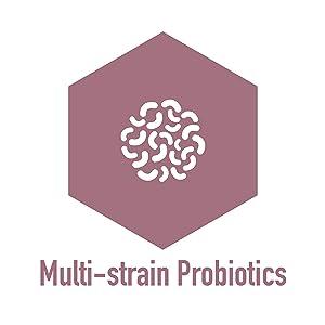 Multi-strain Probiotics
