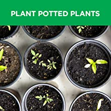 Plant Potted Plants, Bulbs & Vegetables