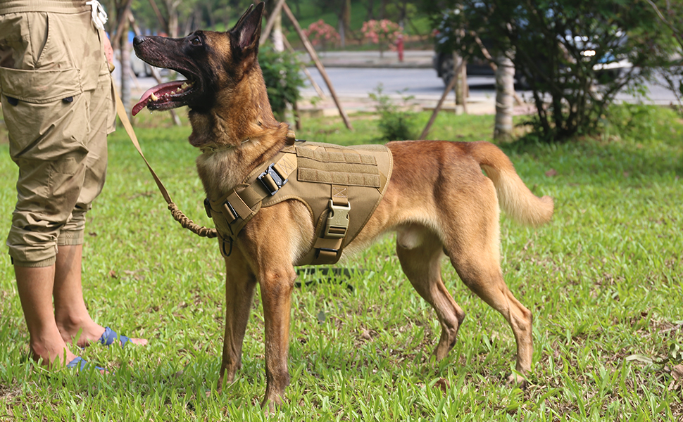 k9 dog harness