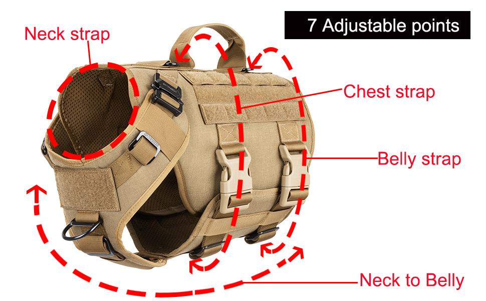 adjust dog harness