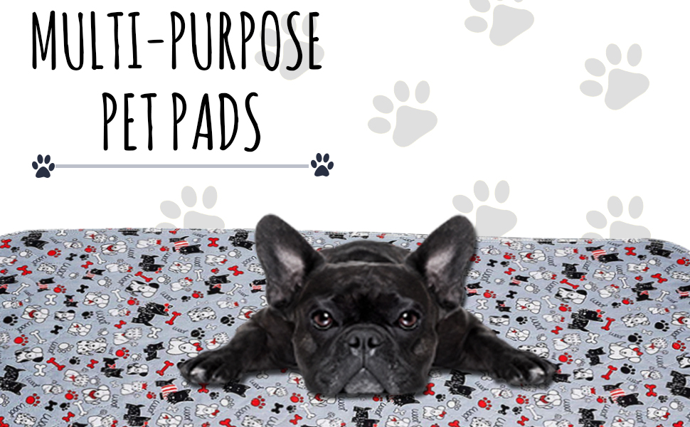 Extra Large Absorbent Pads for Puppy Potty Training