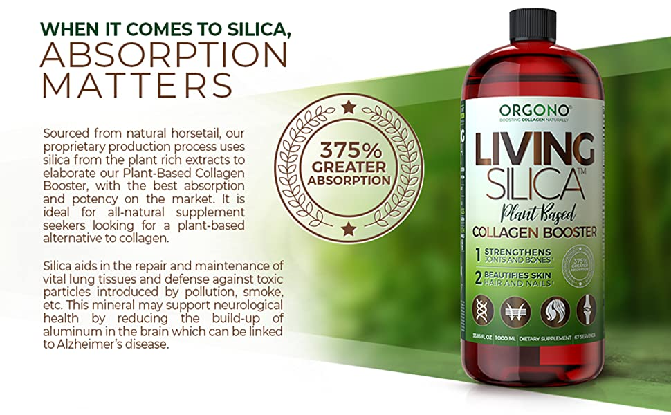 Absorption of Living Silica Plant Based Collagen Booster