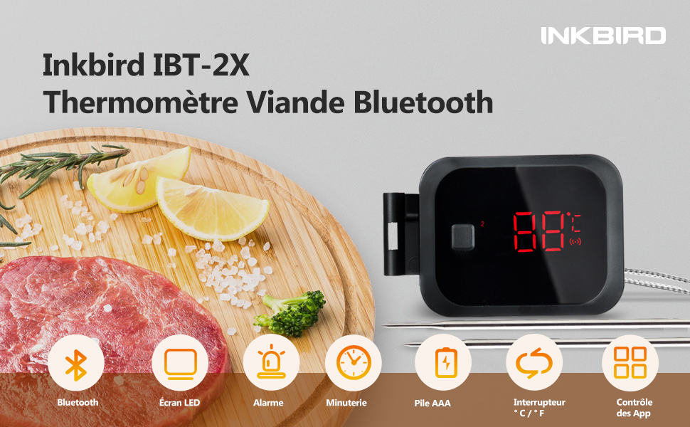 Inkbird IBT-2X Thermometre barbecue