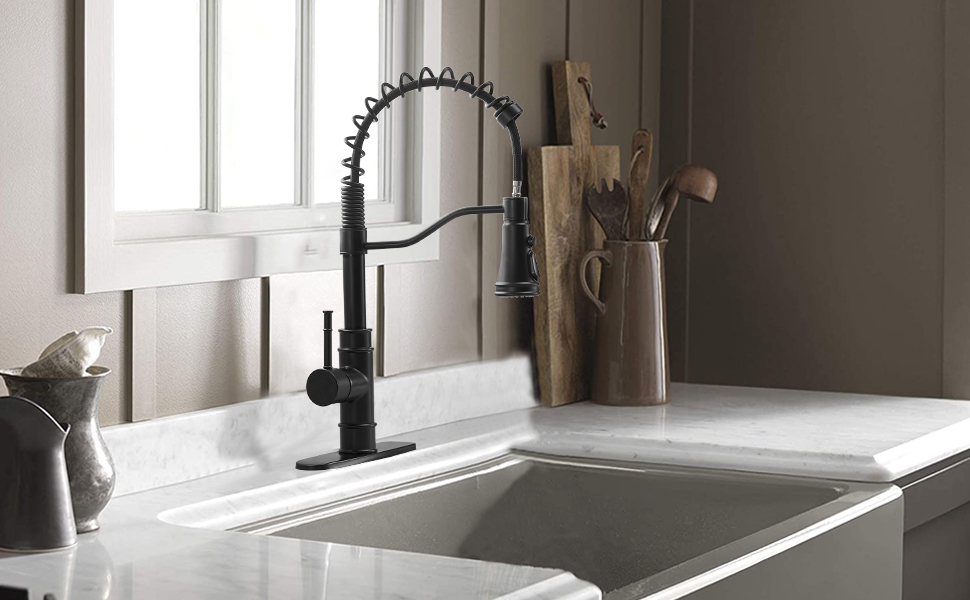 Kitchen faucet Pull out sprayer