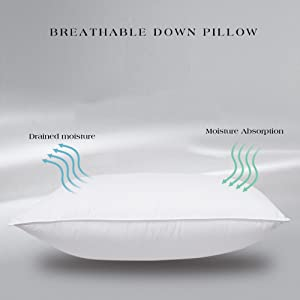 Breathable Egyptian Cotton
