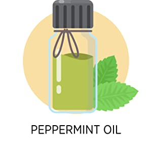 Peppermint Oil in a bottle extracted from Peppermint leaves