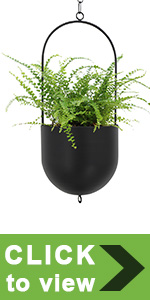wall planters for indoor plants