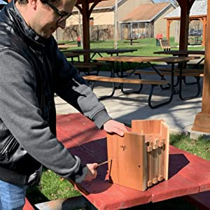 Unscrew the Wakefield Log Cabin Birdhouse with a Phillips screwdriver