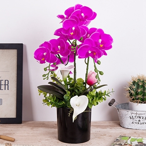 """pink-green 13/""""//32 cm Plastic Orchid ZEHRA in bale of soil Artificial Orchid"""